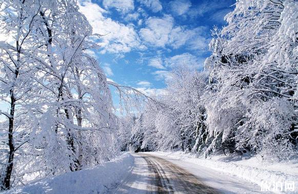2019年春节会下雪吗 春节冷不冷