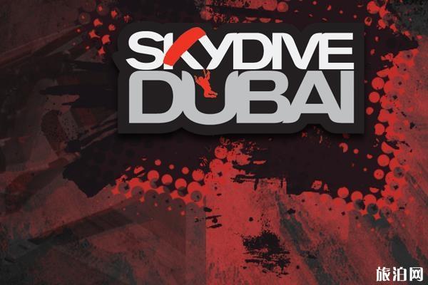 迪拜跳伞攻略(费用多少钱+官网地址+预约流程)