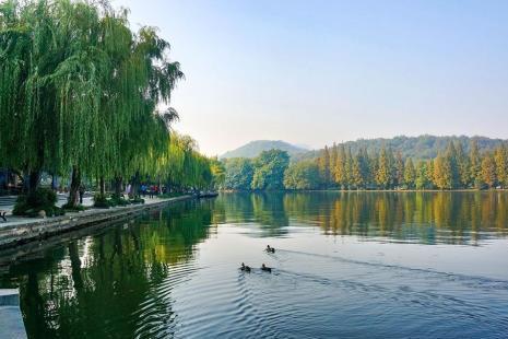 2019杭州公园卡新增景点+年卡价格+办理地点+使用范围