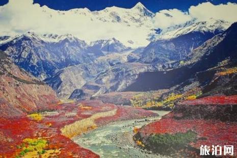 西藏雅鲁藏布大峡谷住宿攻略