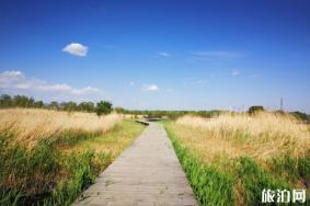 国内骑行路线条推荐 国内春天哪里适合骑行踏青
