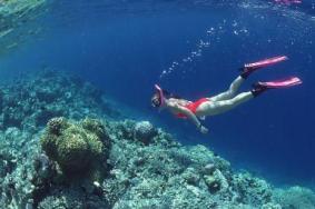 仙本那適合潛水考證嗎 仙本那考潛水證攻略