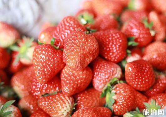 石家庄哪里可以摘草莓 石家庄摘草莓多少钱