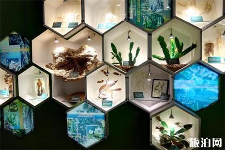 北京自然博物馆预约官网 北京自然博物馆门票 北京自然博物馆开放时间