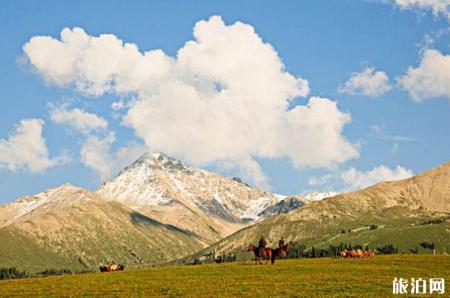 新疆旅游注意什么 新疆游玩攻略