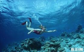 为什么要去沙巴潜水