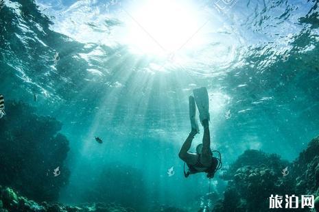 沙巴潜水店怎么选择
