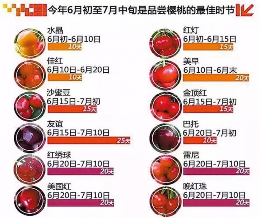 中国哪里的樱桃好吃 樱桃什么时候成熟