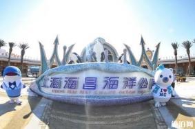 上海海昌海洋公园和迪士尼哪个更好玩