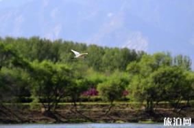 北京延庆避暑旅游路线整理