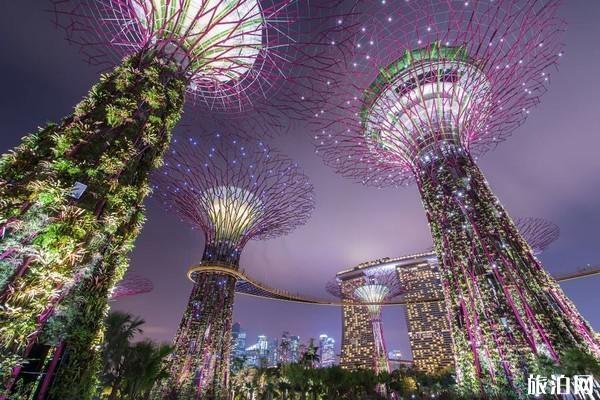 新加坡游记感悟