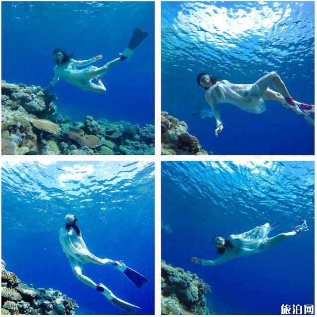 在水下如何拍出大片感 水下摄影攻略