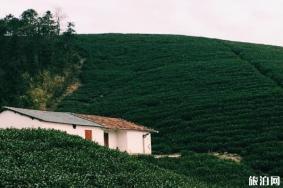 莫干山最佳旅行时间 莫干山四季面貌