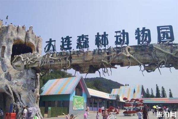 大连森林动物园门票 大连森林动物园怎么去 大连森林动物园游玩攻略