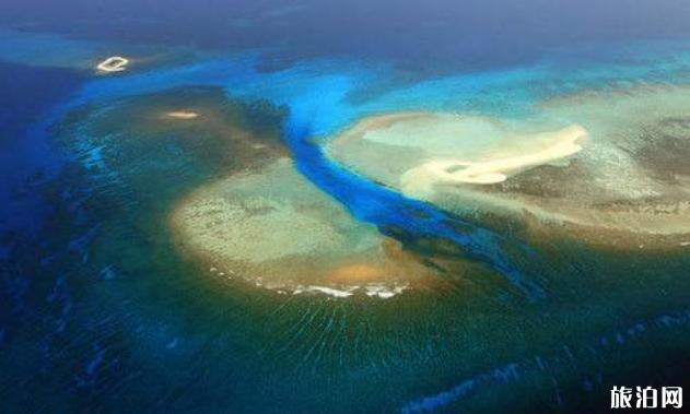 西沙可以潜水吗 怎么去西沙群岛自由行