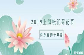 2019上海松江荷花节 地址+门票