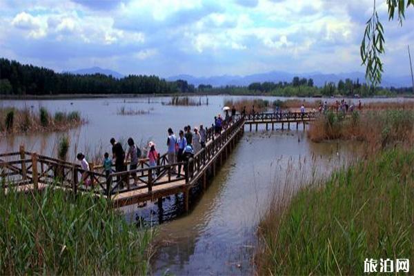 北京延庆野鸭湖门票_野鸭湖国家湿地公园停车费+自行车租赁费用_旅泊网