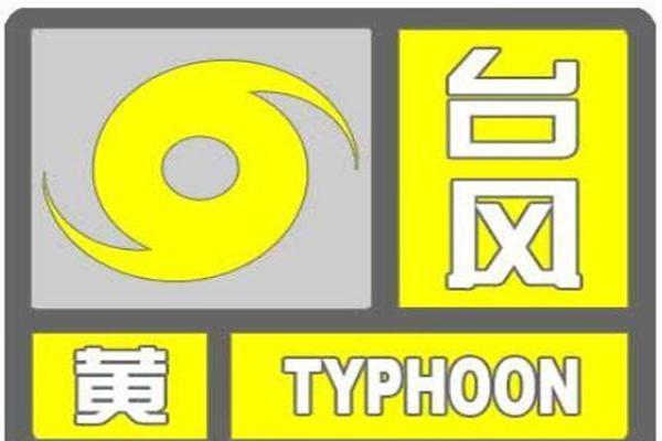 利奇马台风对大连影响 积水路段+交通影响+停课消息+取消航班+天气