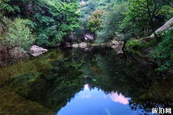 栾川蝴蝶谷景区门票多少钱 有哪些景点
