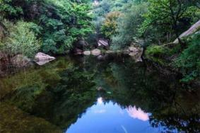 栾川蝴蝶谷景区门