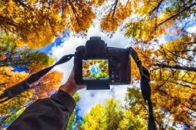秋季摄影小技巧