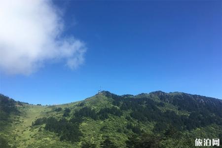 神农顶风景区天气 神农顶在哪里 神农顶游玩攻略