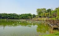 松山湖風景區要門票嗎 松山湖風景區好玩嗎 松山湖風景區游玩攻略