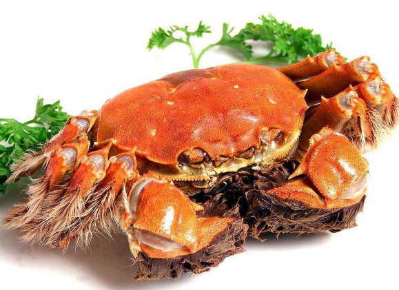 大闸蟹吃公的还是母的 大闸蟹公母都有蟹黄吗