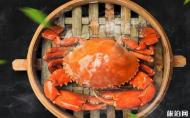 三门青蟹什么时候上市 2019三门青蟹多少钱一斤