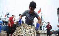 青岛开海去哪买海鲜