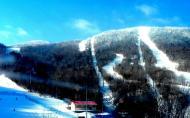 亞布力新體委滑雪場攻略 亞布力滑雪場門票價格