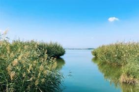 宁夏沙湖旅游精品