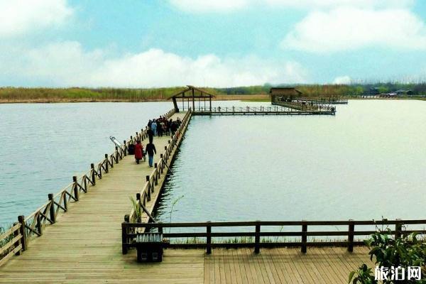 溱湖湿地公园游玩攻略 溱湖湿地公园交通指南