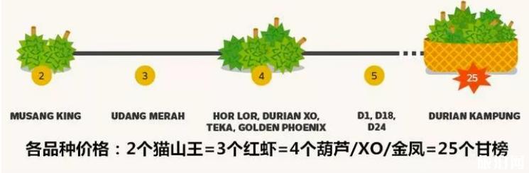 猫山王榴莲多少钱 猫山王榴莲什么季节熟