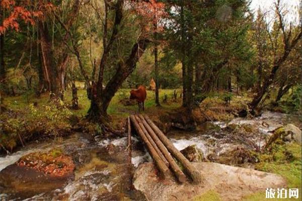 孟屯河谷景点有哪些 适合赏秋的地方有哪些