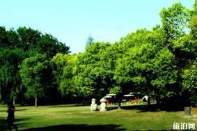上海共青森林公園可以用支付寶或者是微信嗎 上海共青森林公園停車在哪里比較好