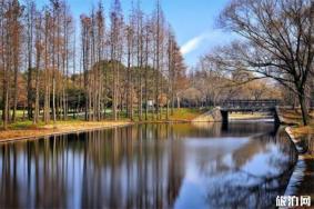 上海共青森林公園門票 公園燒烤在哪個門 上海共青森林公園游玩攻略
