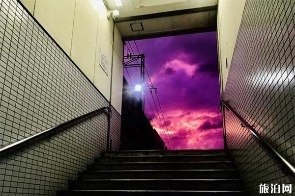 日本海贝思台风前夕紫色天空