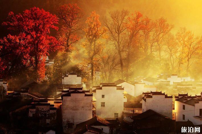 11月去哪旅游好 11月份適合旅游的地方