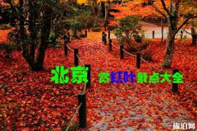 2019北京秋天赏红叶的地方有哪些