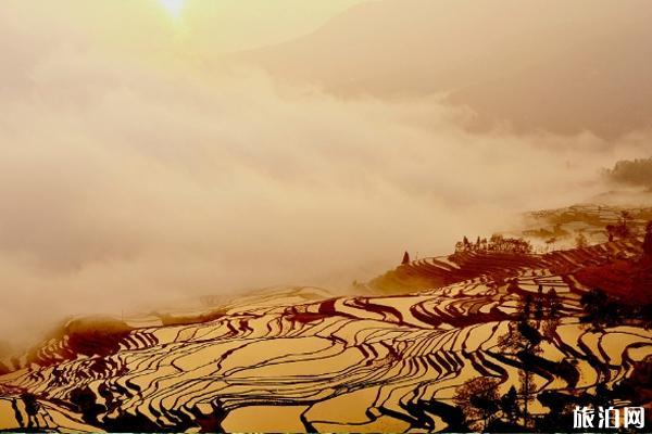 元阳梯田最佳旅游时间是几月份 元阳梯田最佳拍摄点