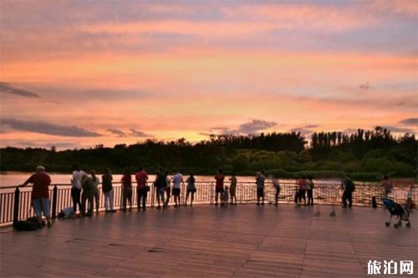 北京奧林匹克森林公園適合拍照的地兒