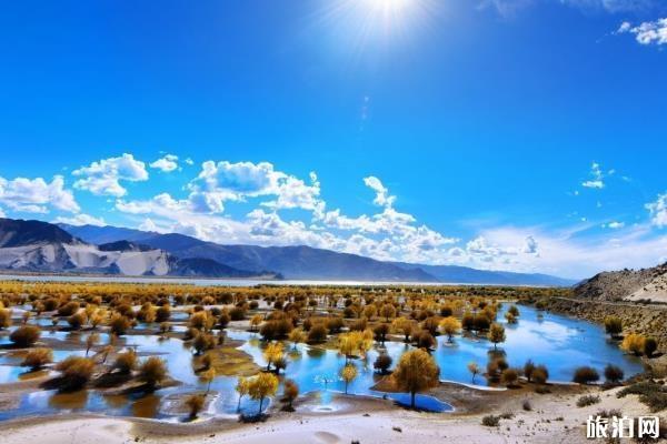 冬天去西藏旅游攻略 西藏冬季旅游攻略