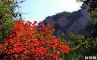 神灵寨风景区 神灵寨风景区游玩攻略 神灵寨景点介绍