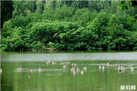 2019-2020北京景区冬季封山时间 2019北京景区冬季关闭景区