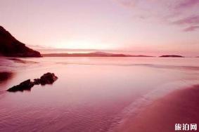 巴哈马粉色沙滩有哪些玩法