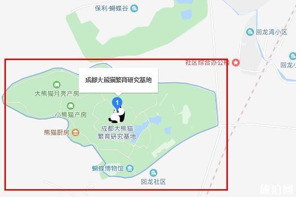 成都熊猫基地一日游攻略