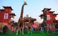 太原動物園現在能去嗎 太原動物園門票價格 太原動物園游玩攻略