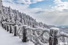 廬山霧凇一般什么時候 南方哪里可以看雪