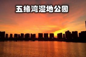 廈門五緣灣濕地公園游玩攻略 門票 地址 開放時間